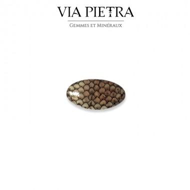 Agate peau de Serpent véritable, Snakeskin agate, Indonésie, Madura. Lithothérapie, chakra
